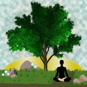 how to transform your life with a balanced life | How to transform your life? Using these 5 Amazing Techniques | krescon.com